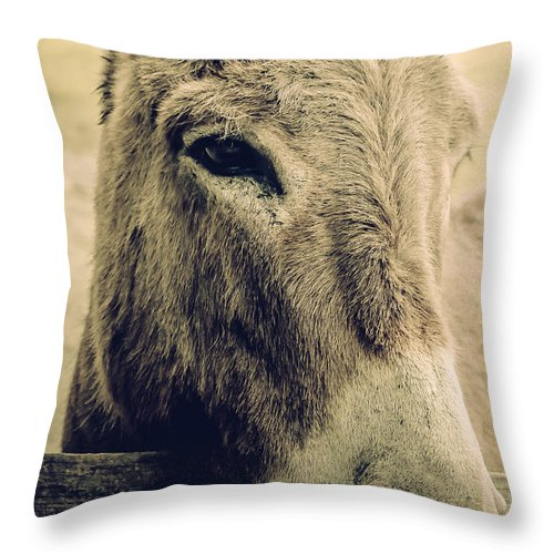 Animal Throw Pillow featuring the photograph My Friend by Mary Underwood
