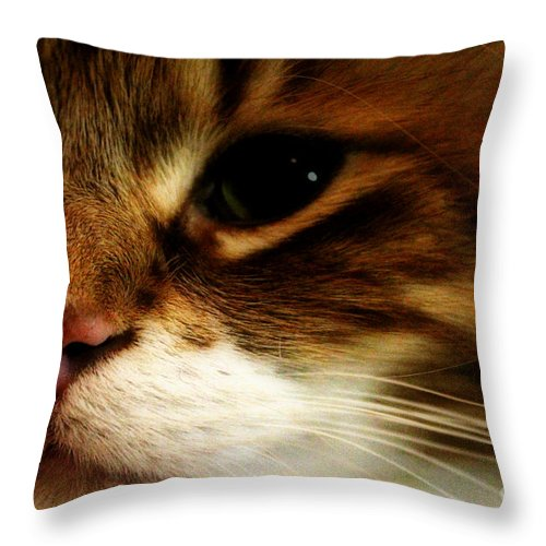 Beautiful Throw Pillow featuring the photograph My Love by Walker and Haberfield