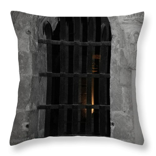 Cell Throw Pillow featuring the photograph Mysterious Face In Cell by Diana Haronis