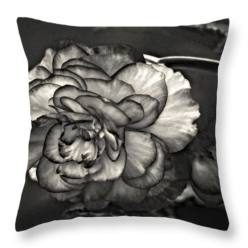 Begonia Throw Pillow featuring the photograph Mystery Girl by Steve Harrington