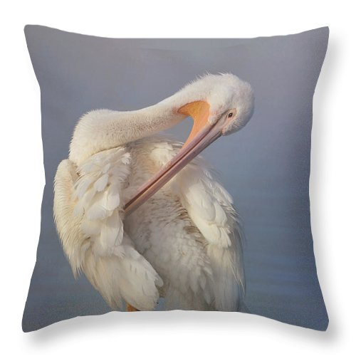 American White Pelican Throw Pillow featuring the photograph Mystic Morning 2 by Fraida Gutovich