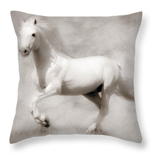 Horses Throw Pillow featuring the photograph Mystical by Athena Mckinzie