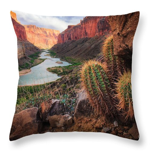America Throw Pillow featuring the photograph Nankoweap Cactus by Inge Johnsson