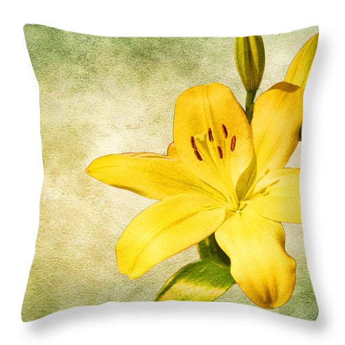 Yellow Throw Pillow featuring the photograph Narcissus by Steve McKinzie