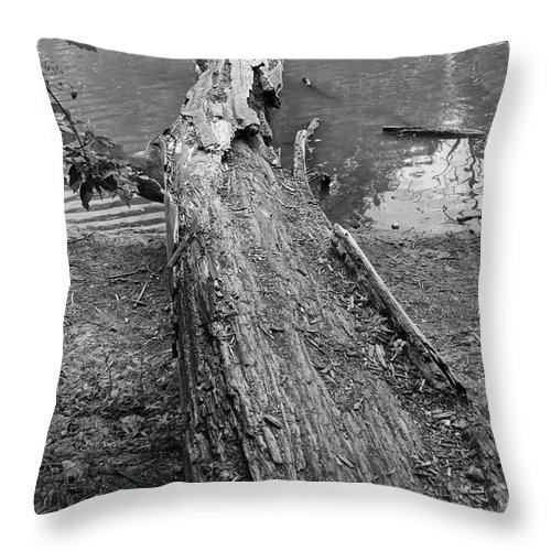River Throw Pillow featuring the photograph Natural Change In Bw by Thomas Woolworth