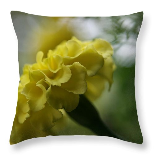 Flower Throw Pillow featuring the photograph Natural Ruffles by Neal Eslinger