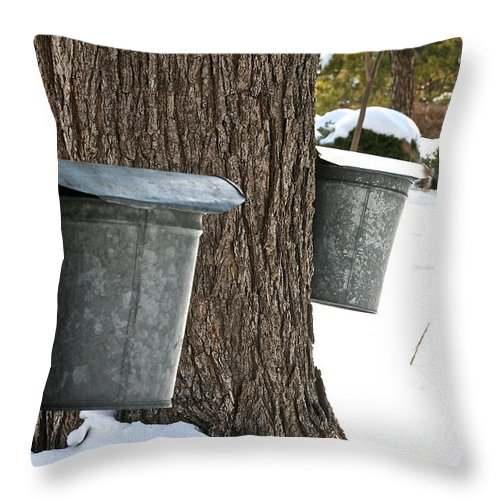Tree Throw Pillow featuring the photograph Naturally Sweet by Susan Herber