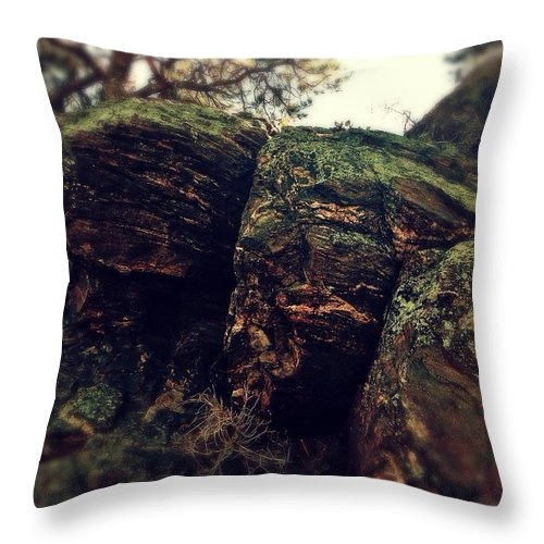 Landscape Throw Pillow featuring the photograph Nature Hike by Sarah Jane Thompson