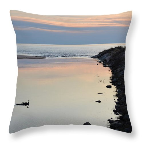 Ludington Throw Pillow featuring the photograph Natures Best by Linda Kerkau
