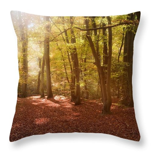 Landscape Throw Pillow featuring the photograph Nature's Light by Matthew Gibson