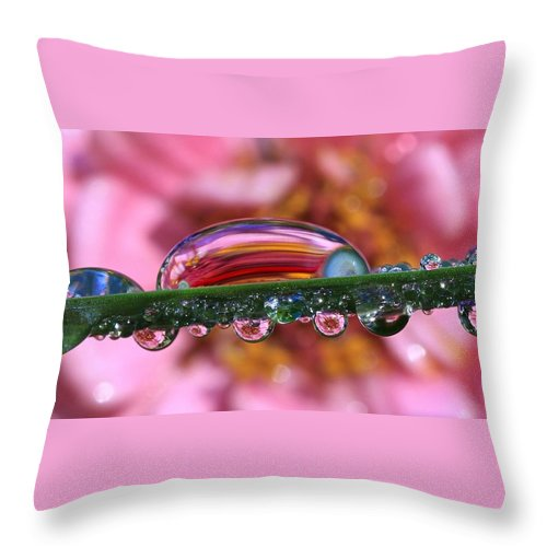 Water Drops Throw Pillow featuring the photograph Nature's Ornaments by Gary Yost