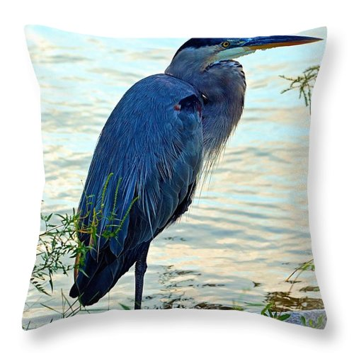Great Throw Pillow featuring the photograph Navarre Gbh I Mlo by Mark Olshefski