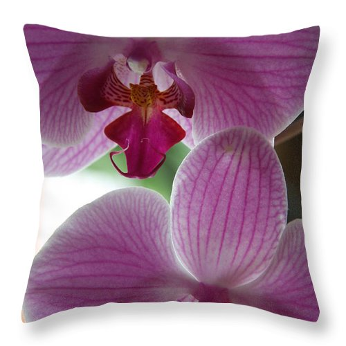 Orchid Throw Pillow featuring the photograph Neat Faces by Christiane Schulze Art And Photography