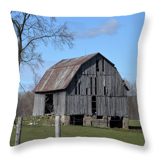Barn Throw Pillow featuring the photograph Needs Some Love by Linda Kerkau