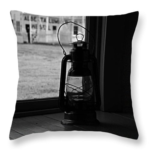 Lamp Throw Pillow featuring the photograph Neighbours Expense by The Artist Project