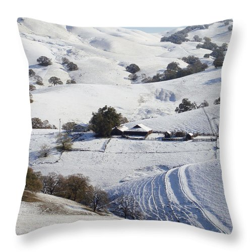 Snow Throw Pillow featuring the photograph Never Snows In California by Donna Blackhall