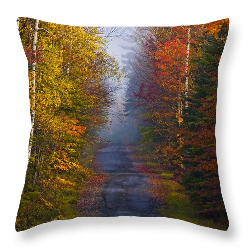 Back Road Throw Pillow featuring the photograph New Hampshire Back Road by Jerry Fornarotto