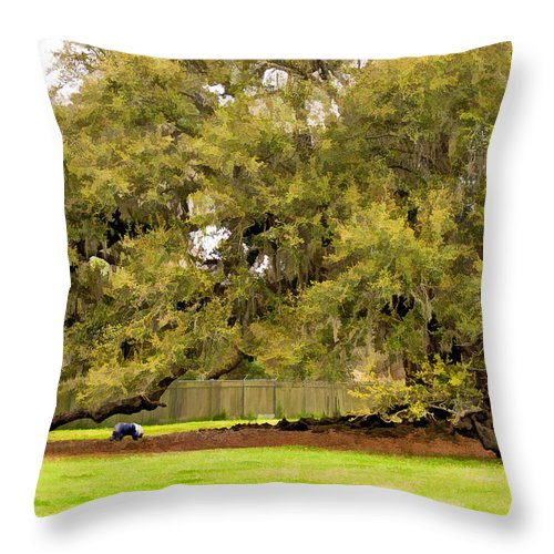 Nola Throw Pillow featuring the photograph New Orleans' Tree Of Life 2 Paint by Steve Harrington