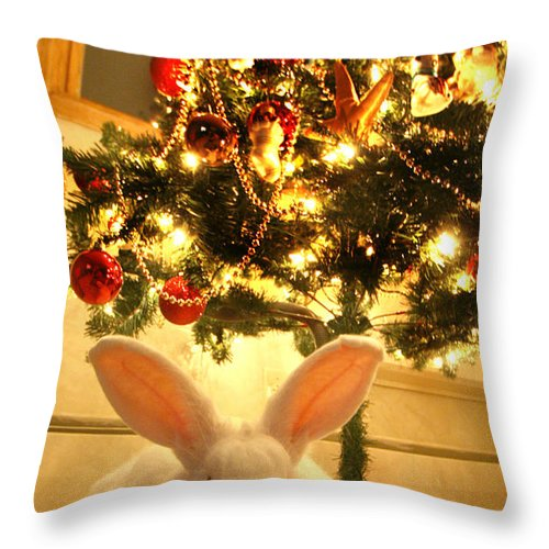 Rabbit Throw Pillow featuring the photograph New Zealand White Rabbit Under The Christmas Tree by Amanda Stadther