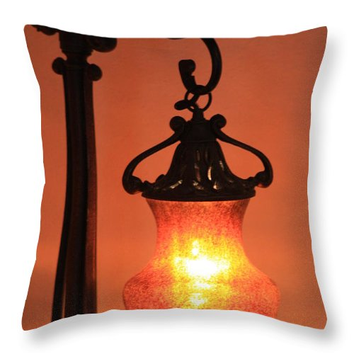 Evening Throw Pillow featuring the photograph Night by Brandi Maher