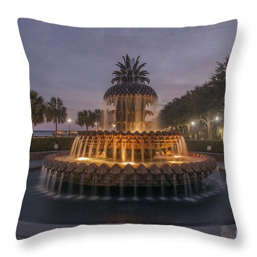 Pineapple Fountain Throw Pillow featuring the photograph Night Sky by Dale Powell