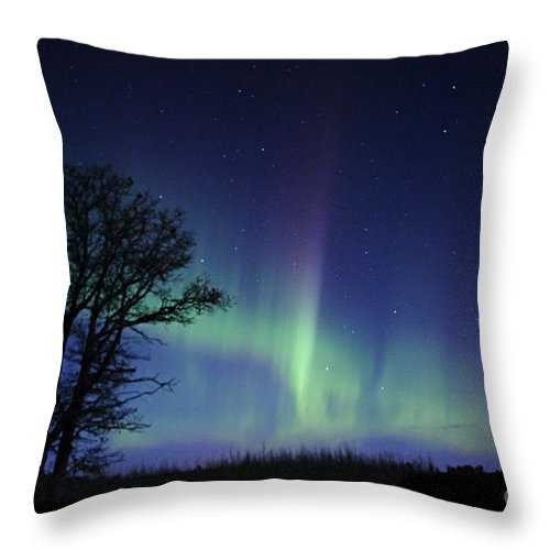 Photography Throw Pillow featuring the photograph Night Time Dance by Larry Ricker