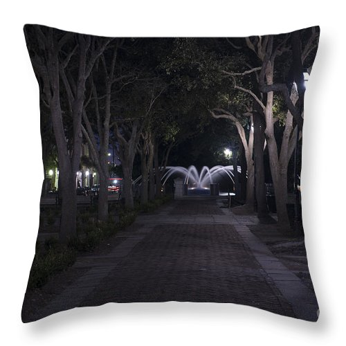 Fountain Throw Pillow featuring the photograph Night View by Dale Powell
