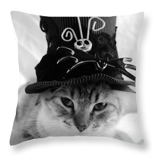 Nightmare Before Christmas Throw Pillow featuring the photograph Nightmare Before Christmas Kitty by Cuca Montoya