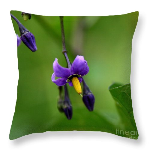 Floral Throw Pillow featuring the photograph Nightshade by Neal Eslinger