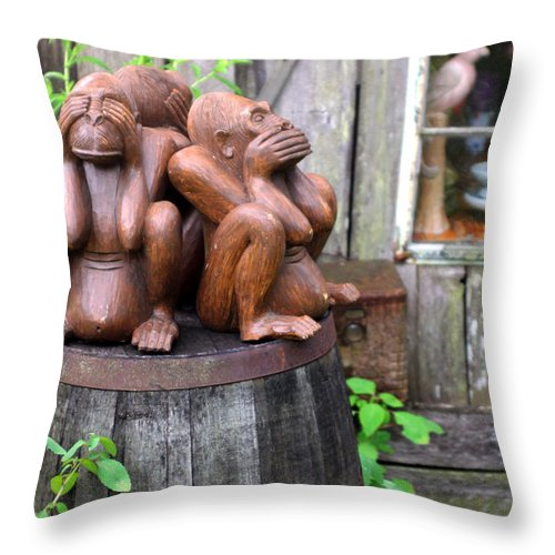 Unique Throw Pillow featuring the photograph No Evil by Jennifer Robin