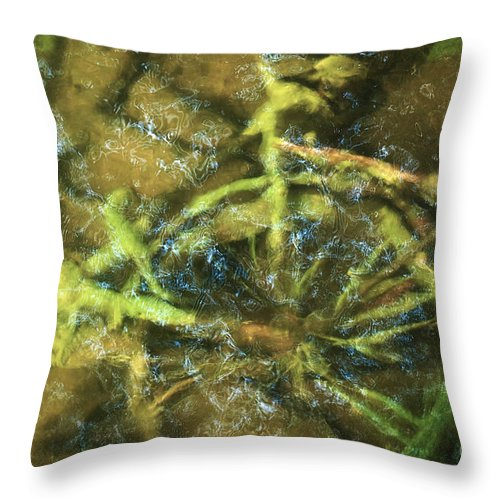 Bicycle Throw Pillow featuring the photograph No Longer In Use by Allan Wallberg
