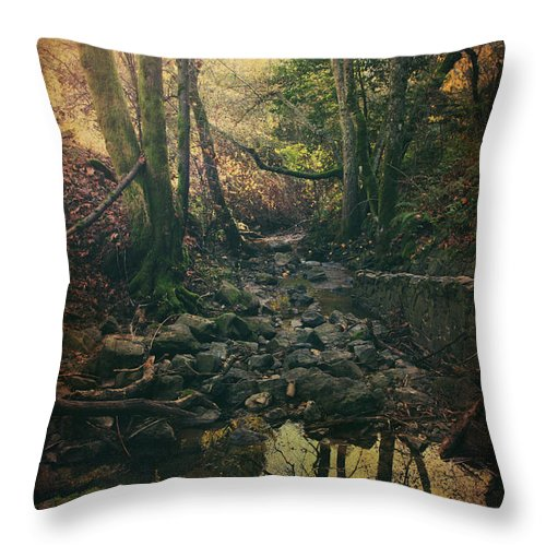 Redwood Regional Park Throw Pillow featuring the photograph No Matter How Far by Laurie Search