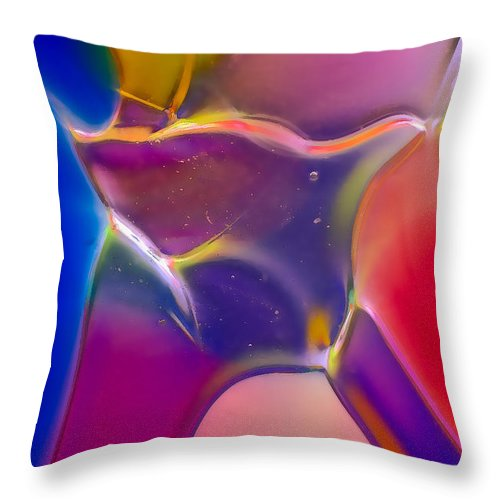 Blue Throw Pillow featuring the photograph Noble Colors by Omaste Witkowski