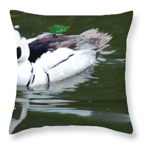 Water Bird Throw Pillow featuring the photograph North American Male Smew by Optical Playground By MP Ray