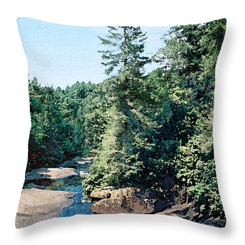 Landscape Throw Pillow featuring the digital art North Carolina Landscape by Steve Karol