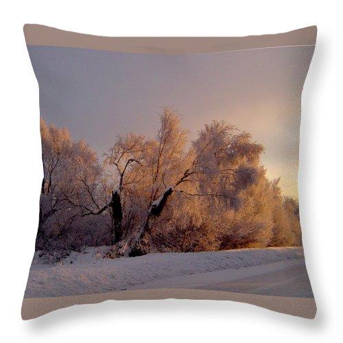 Alaska Throw Pillow featuring the photograph Northern Light by Jeremy Rhoades