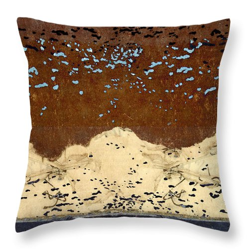 Landscape Throw Pillow featuring the photograph Northern Lights by Carol Leigh