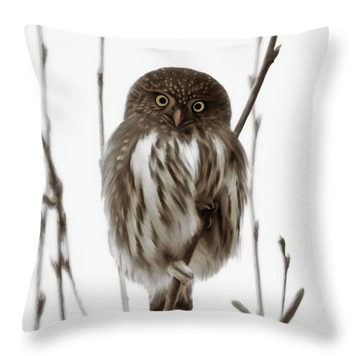 Northern Pygmy Owl Throw Pillow featuring the painting Northern Pygmy Owl - Little One by Beve Brown-Clark Photography