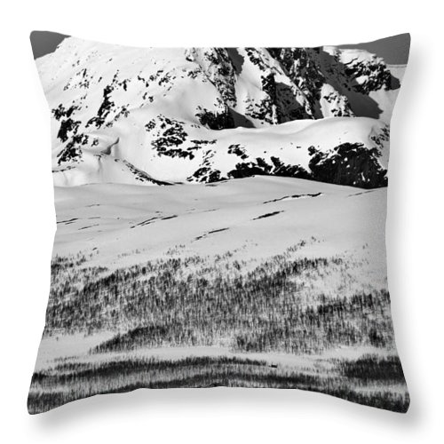 Norway Throw Pillow featuring the photograph Norwegian Winter Mountain Cabin by David Broome