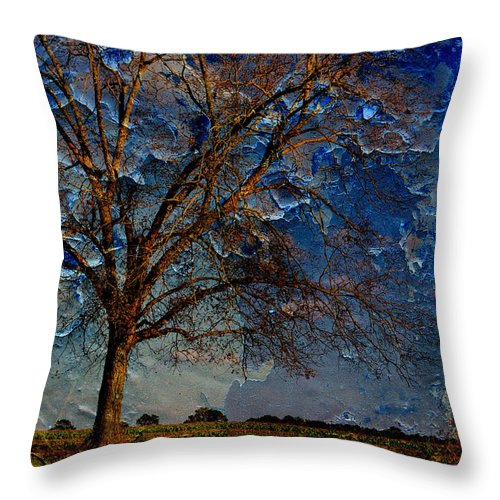 Landscapes Throw Pillow featuring the photograph Nothing But Blue Skies by Jan Amiss Photography