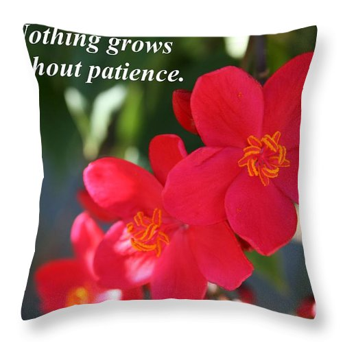 Lipstick Tree Throw Pillow featuring the photograph Nothing Grows Without Patience by Pharaoh Martin