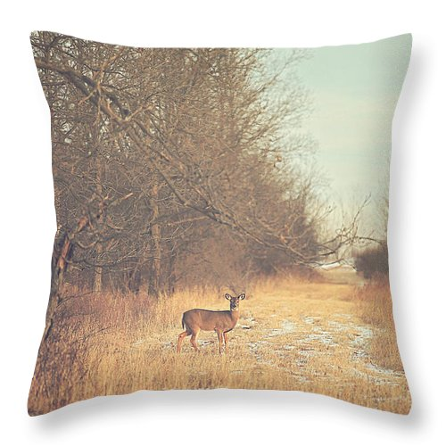 November Throw Pillow featuring the photograph November Deer by Carrie Ann Grippo-Pike
