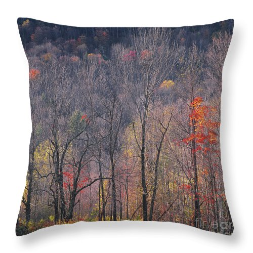 Autumn Throw Pillow featuring the photograph November Woods by Alan L Graham