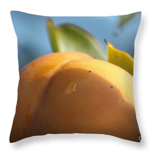 Persimmon Throw Pillow featuring the photograph Nude Persimmon by Luv Photography