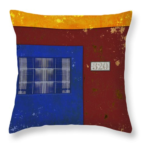 320 Throw Pillow featuring the photograph Number 320 by Carol Leigh
