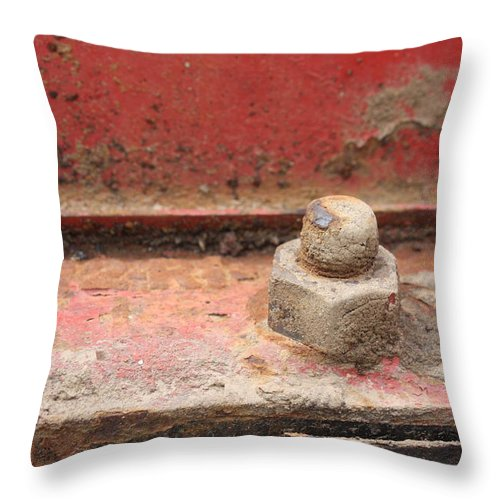 Nut Throw Pillow featuring the photograph Nut by Valerie Loop