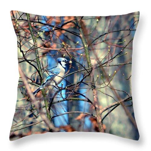 Bird Throw Pillow featuring the photograph Nutty Buddy by Deena Stoddard