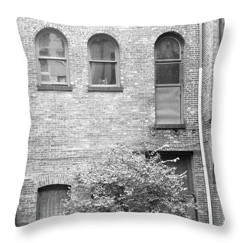 Buildings Throw Pillow featuring the photograph Nyc Courtyard by Mary Haber