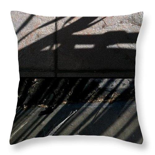 Marlene Burns Throw Pillow featuring the photograph O Shad O by Marlene Burns