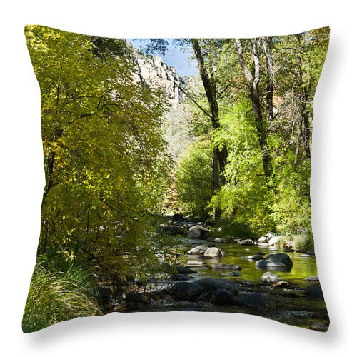 Red Throw Pillow featuring the photograph Oak Creek Canyon Creek Arizona by Douglas Barnett